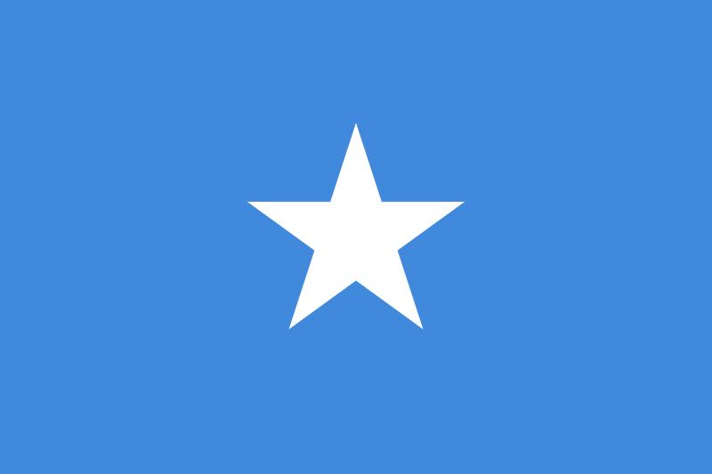 Somalie : les islamistes publient des photos du cadavre d'un soldat français