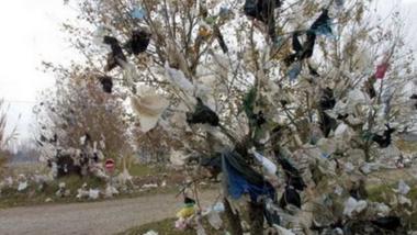 N'Djamena champion d'utilisation d'emballage biodégradable