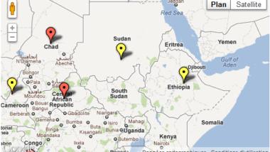 Le GIC appelle au renforcement de la lutte contre l'épidémie de méningite C en Afrique