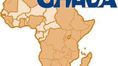 La première session du Conseil des ministres de l'OHADA du 13 au 14 juin à Ouagadougou