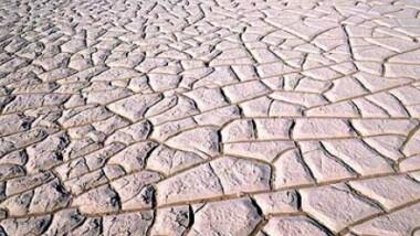 Tchad/COMIFAC : La dégradation des sols menace la sécurité alimentaire et l'environnement
