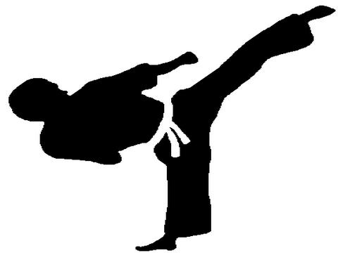 25 responsables de clubs de Taekwondo en formation