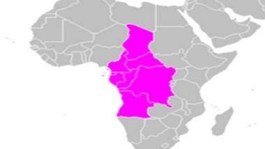 Pétrole : le grand retour de l'Afrique centrale