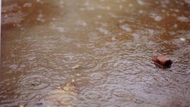 Tchad : les pluies se font prier