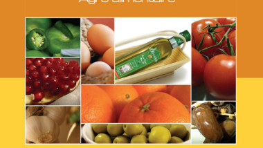 L'Afrique invitée à renforcer la compétitivité de son secteur agro-alimentaire