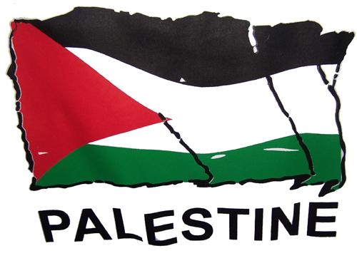 L'ONU demande à la communauté internationale de se mobiliser face aux violations israéliennes des droits des Palestiniens