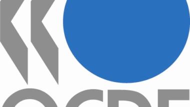 Forum OCDE-Afrique: L'Afrique peut avoir plus d'un modèle de développement
