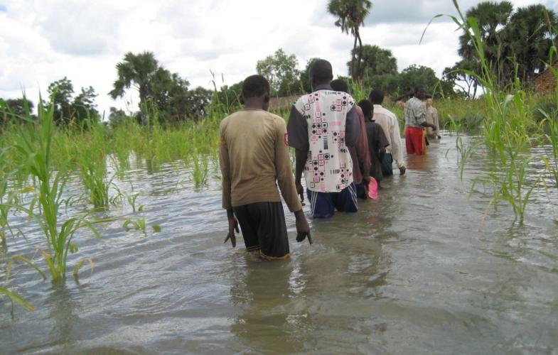 Conflit agriculteurs- éleveurs : plus de 3 morts dans le canton Delbian dans la Tandjilé
