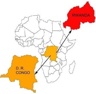 RDC: offensive de l'armée et de l'ONU contre les rebelles hutus rwandais