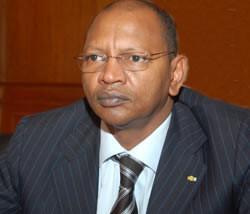 Tchad: lancement officiel des activités du Mécanisme Africain d'Evaluation par les Pairs