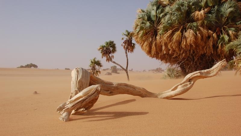 Massif de l'Ennedi : paysage naturel et culturel de l'UNESCO
