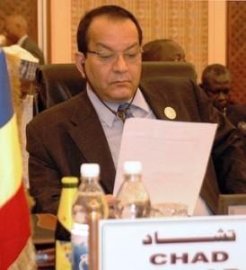 La CEEAC condamne la décision d'interdiction des ressortissants tchadiens aux USA
