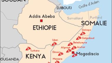 L'ONU dénonce la diffusion d'un nouveau virus de polio dans la Corne de l'Afrique