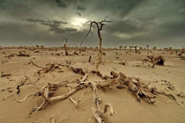 Tchad : 55 millions USD pour les populations des zones vulnérables au changement climatique