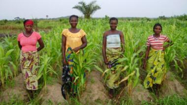 L'entreprise chinoise CGCOC veut au développement de l'agriculture au Tchad