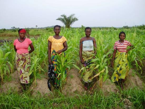 Les femmes de l'Afrique centrale dans une situation problématique vis-à-vis de l'accès à la terre