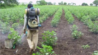 Les experts africains se réunissent à Bamako pour débattre de l'utilisation des pesticides