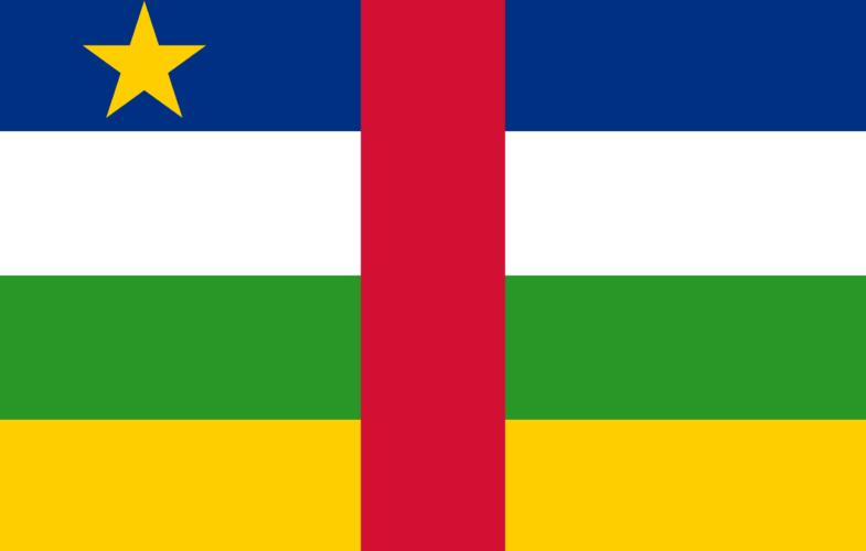Centrafrique : la CEEAC et de l'ONU appellent à un soutien international pour régler la crise