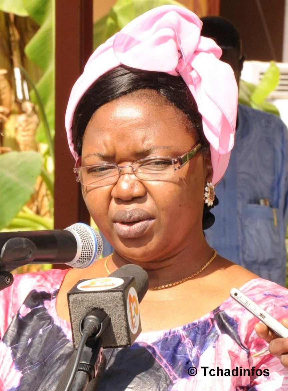 Tchad : lancement de la semaine nationale de l'arbre 2014