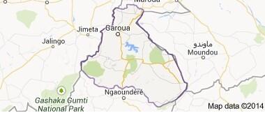 Cameroun : deux soldats tués dans un attentat-suicide dans l'Extrême-Nord
