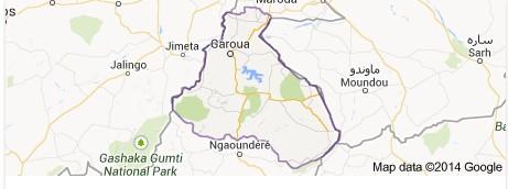 """Cameroun : le gouvernement """"ne ménage aucun effort"""" pour retrouver les Chinois portés disparus dans l'Extrême-nord"""