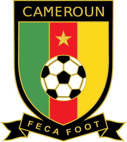 Mondial-2014 : les joueurs camerounais partent finalement pour le Brésil avec une prime individuelle de 11.600 USD