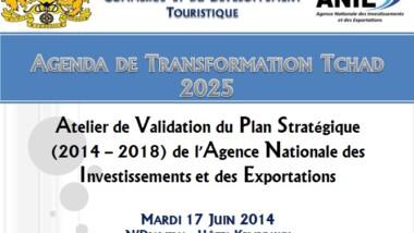 Transformation Tchad 2025 : l'ANIE s'insère dans cette vision en élaborant son Plan Stratégique 2014-2018