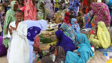 Plus de 5,6 millions d'Africains affectées par la famine à cause des violences de Boko Haram