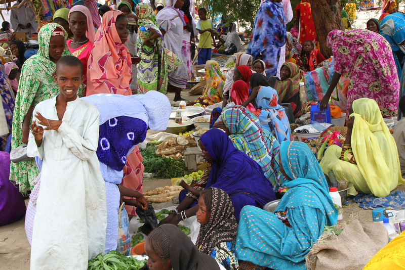 Tchad situation humanitaire difficile dans la r gion du - Bureau de la coordination des affaires humanitaires ...