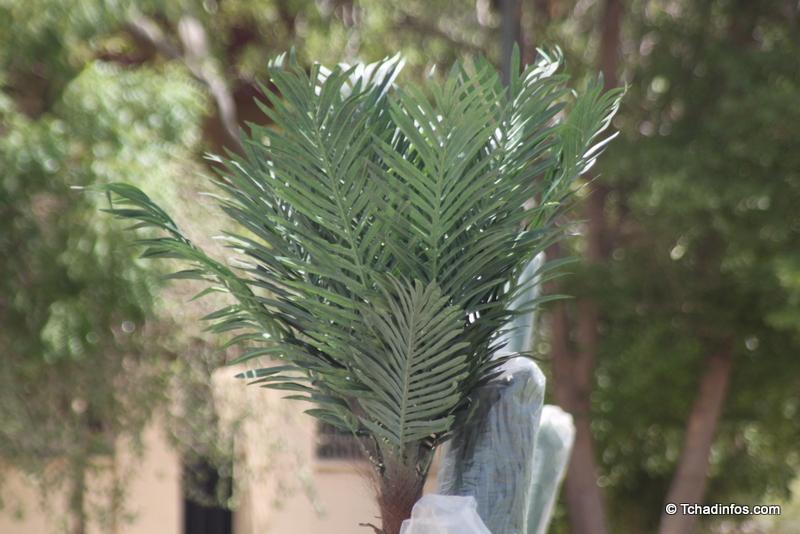 N'Djamena : les palmiers en plastique de la capitale ne sont pas du goût de tous