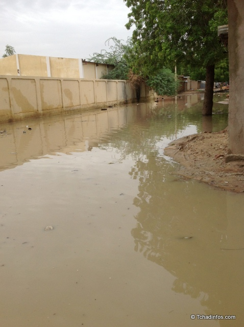 Tchad : un homme, la quarantaine révolue retrouvé noyé à Walia