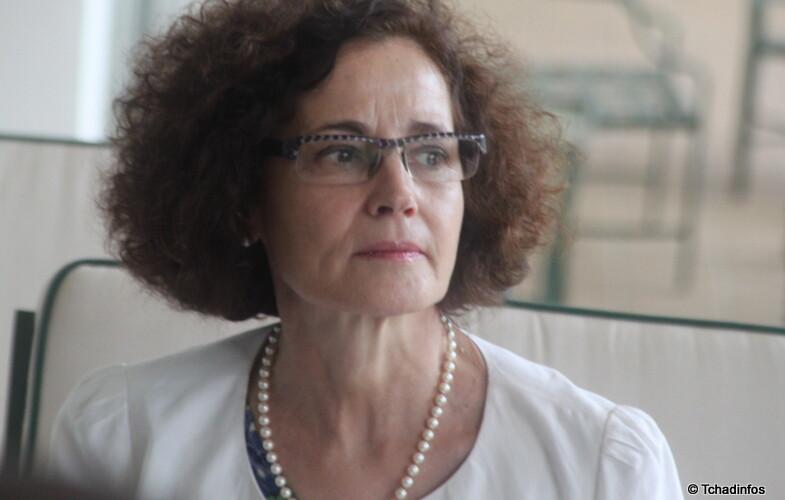 """""""La France et le Tchad sont clairement engagés dans la lutte contre le terrorisme"""" Evelyne DECORPS"""