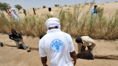 267 milliards $ de plus par an sont nécessaires pour contrer la faim chronique, selon l'ONU