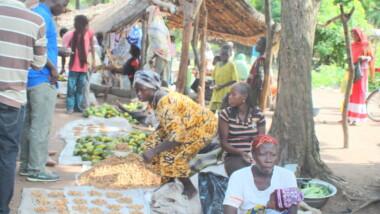 Au sud du Tchad les réfugiés se prennent en charge