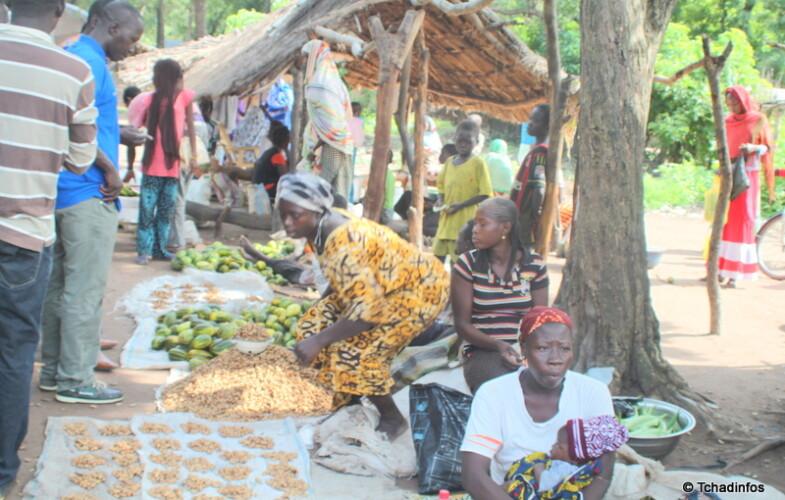 Le Tchad enregistre plus de 6.000 nouveaux réfugiés centrafricains