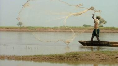 COP 21 : finalisation d'un plan de développement du bassin du lac Tchad de près de 600 milliards FCFA