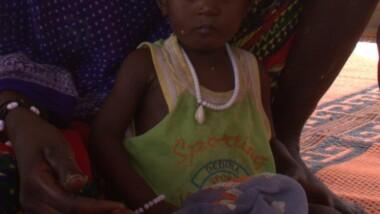 Tchad : partenariat tripartite pour améliorer la sécurité alimentaire et nutritionnelle