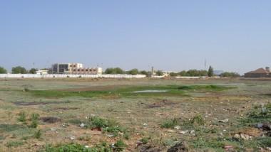 Environnement : le bassin de rétention d'eau de l'aéroport se rétrécit