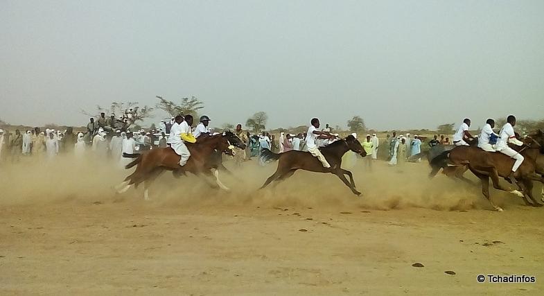 Tchad : Septième édition de la course hippique du Maïdane de Raf