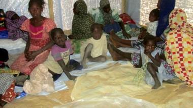 Plus d'un millier de nouveaux réfugiés sont arrivés de la RCA au Tchad