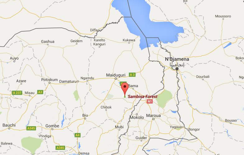 30 membres de Boko Haram tués dans le nord-est du Nigeria