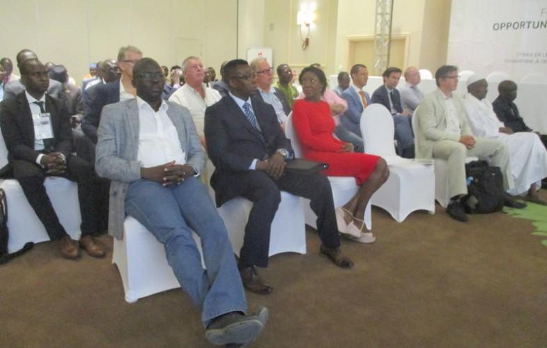 Partenariat : un forum agro-industriel Tchad-Hollande se tient à N'Djamena du 6 au 7 juin