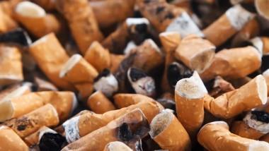 Tchad : l'ADC mécontente de la réduction de la taxe sur le tabac