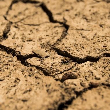 20 millions d'Africains au bord de la famine, selon des agences de l'ONU
