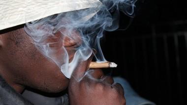 La consommation et la vente de la drogue gagnent du terrain à N'Djamena