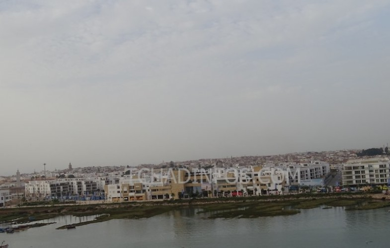 Maroc : le roi Mohammed VI lance Génération Green 2020-2030