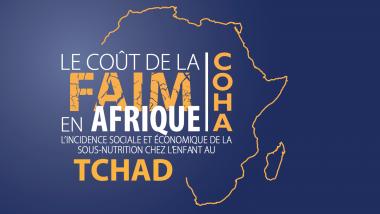 Le Coût de la faim au Tchad coûte 575,8 de milliards à l'économie