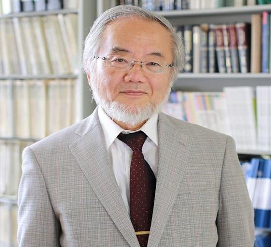 Le prix Nobel de médecine attribué au Japonais Yoshinori Ohsumi