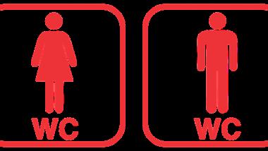 Tchad : 18% d'accès aux toilettes décentes