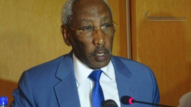 Tchad: lancement de la saison agricole 2017-2018 dans une situation économique difficile